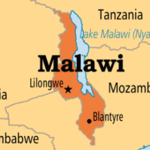Albino candidates plan run for Malawi presidency