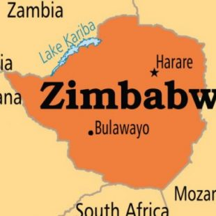 Opposition marches in Zimbabwe in support of free, open elections